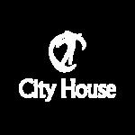 city house(1)
